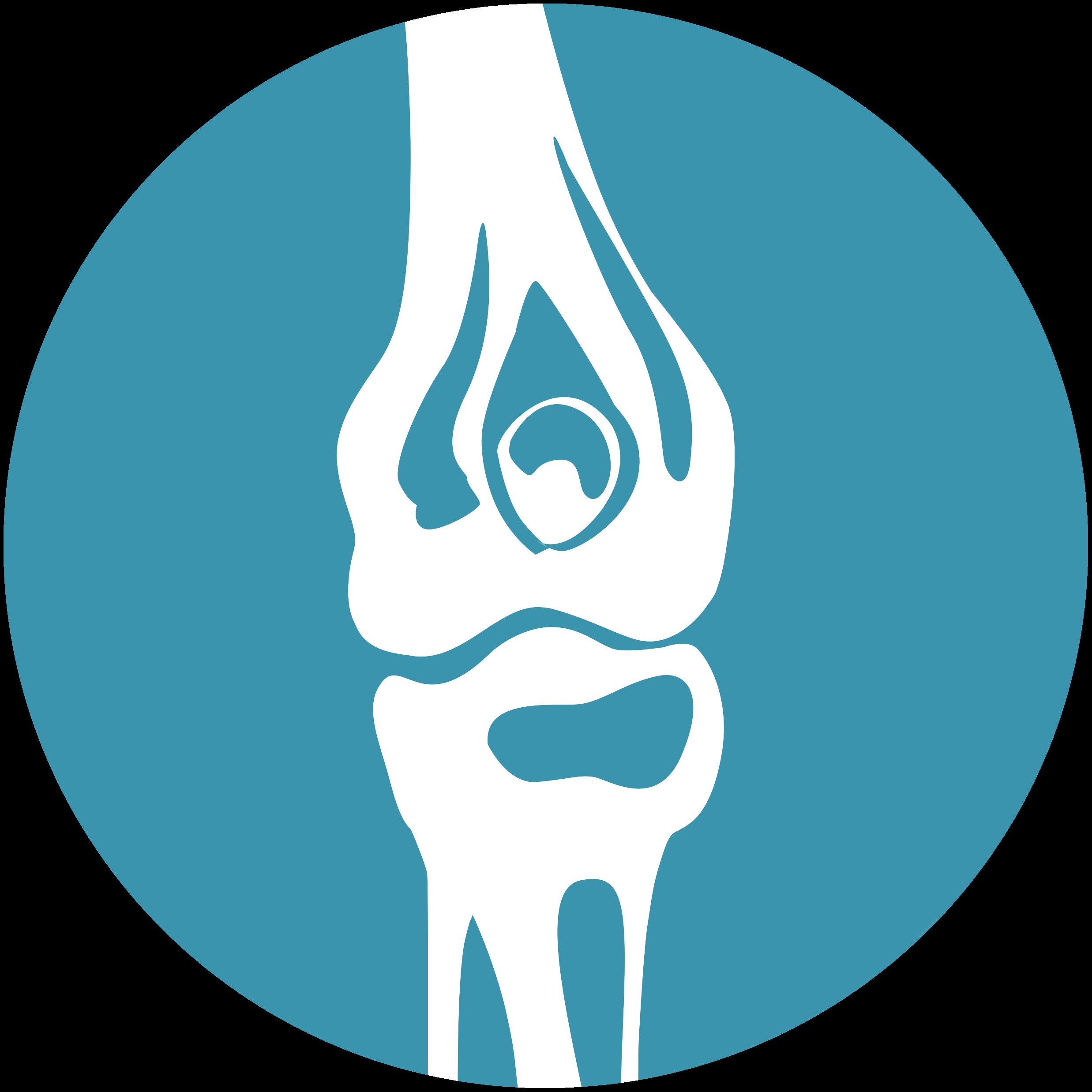Knee Icon_2020 Platform