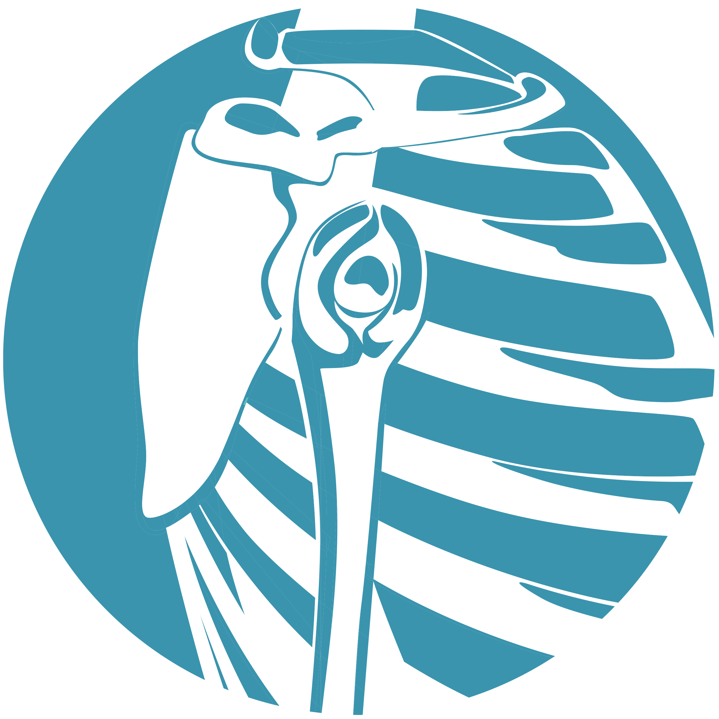 Scapula Icon_2020 Platform